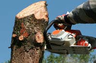 free Camlough tree removal quotes