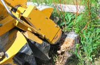 Camlough tree stump grinding services